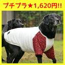【大型犬 犬の服 iDog】アニマル柄の袖がオシャレなトレーナー。 四角いワッペンのワンポイント入り。