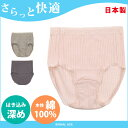 ショーツ 綿100% さらっと快適 日本製 夏 強撚糸 LL 深履き 深ばき ゆったり すっぽり 大きい あす楽