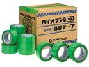 【特価よりさらに50円引き】ダイヤテックス パイオランテープ Y-09-GR 50mm×25m