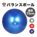 GronG バランスボール ヨガボール エクササイズボール 最大直径75cm アンチバースト 椅子 耐荷重250kg フットポンプ付き