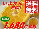 いよかんはこれで最後!送料無料!10kgでこの価格!愛媛県産「小玉」で訳あり 潮風いよかん約10kg