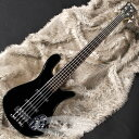Warwick Rock Bass Streamer LX 5st (Solid Black High Polish) 【数量限定特価】