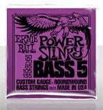 ERNIE BALLCustom Gauge Round Wound Bass 5-Strings/#2821 POWER SLiNKY