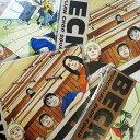 コレクションピックシリーズ 【BECK】ブラインドパッケージ [ピック3個入りセット] 【特価】