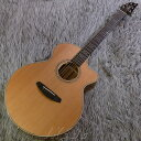 Breedlove Legacy Series A26CE