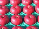 10月中旬より発送!【予約販売】【数量限定】【贈答用】りんごの街より!いきいき農園より直送! 信州中野産  紅玉 中玉 4.5kg