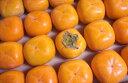【予約特別価格】【数量限定】長野産 おまかせ渋柿 約1kg I字型のみ
