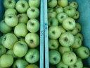 【予約特別価格】【数量限定】【訳あり】長野産 種類おまかせりんご 約5k(写真は王林です)