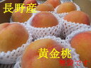 数に限りがあります!【8月半ばより発送!】糖度12-14程度桃の味わいとマンゴのような味わいで、果肉は黄色です!長野産 黄金桃 3個〜4個 約1kg 果物箱入り