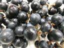 9月より発送予定!寒暖差のある長野からおいしいジャムやジュースに!長野産 山葡萄(山ブドウ) 約50g