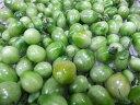 9月下旬より1月まで発送予定!緑色です!ピクルス!加工用に!長野産 ミニトマト 約500g