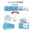 ぷるるるん乳酸菌グランドゼリー(10g×30本)【送料無料】