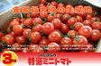ショッピングミニ 『たっぷりミニトマト3kg箱』九州熊本・JAたまな産厳選品★3箱までは1梱包で配送可。★【贈答に最適】