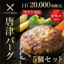 ハンバーグ ギフト 【唐津バーグ 5個】肉汁たっぷり お試しセット 送料無料 冷凍 でお