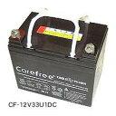 密閉型 ディープサイクルバッテリー イーグルピッチャー CF-12V200DC 蓄電池