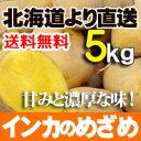 ジャガイモ インカのめざめ 5kgセット 北海道産 贈り物 内祝 ギフトあげいも フライドポテト等 おいもを使ったおやつに 送料無料