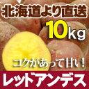 じゃがいも レッドアンデス 10kg 北海道産 ジャガイモ 送料無料