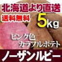 【9月下旬発送予定】 じゃがいも 北海道産 ノーザンルビー5kg 野菜セット 贈り物 お歳暮 ギフト 送料無料