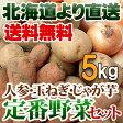 北海道産 定番野菜セット じゃがいも 2kg・玉ねぎ2kg・人参1kgセット 贈り物 ギフト 送料無料