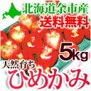 【10月下旬発送予定】 りんご ひめかみ 5kg(14〜18玉)北海道余市産 葉とらずリンゴ 果物 フルーツ 贈り物 ギフト 送料無料 秋の味覚