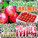 南陽 2Lサイズ500g 送料無料 超高級品種 北海道産果物...