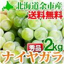 ナイヤガラ 秀品L〜2Lサイズ2kg ぶどう 北海道 余市産 ナイアガラ 白ぶどう 果物 フルーツ 贈り物 内祝い お返し ギフト お取り寄せ 送料無料 秋の味覚