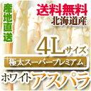 送料無料!極太スーパープレミアム!美味しい新鮮ホワイトアスパラ!北海道から直送します!