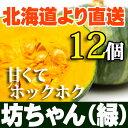 坊ちゃんかぼちゃ(緑)12個セット 北海道産 贈り物 内祝 お返し ミニかぼちゃ ギフト 秋の味覚 ミニかぼちゃ ハロウィン
