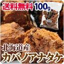 カバノアナタケ 北海道産 貴重な国産 かばのあなたけ茶 送料無料