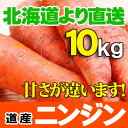 北海道産 ニンジン 土付き にんじん 10kgセット人参ジュースに最高! 贈り物 ギフト 送料無料