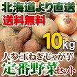 北海道産 定番野菜セット 新鮮野菜 10kgセット北海道 直送にんじん/じゃがいも/たまねぎ 贈り物 お歳暮 ギフト 送料無料