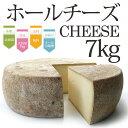 チーズ 【ホール チーズ 7kg 】 北海道産 トム セミハード タイプ ASUKAのチーズ工房 ラクレットチーズなどに パーティー 業務用