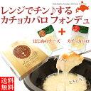 チーズセット ギフト  ナチュラルチーズセット 北海道産 ASUKAのチーズ工房 無添加 北海道産生乳使用 一貫生産 送料無料