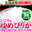 最高級品種北海道米 お試しパックいころのゆめぴりか北海道産ゆめぴりか3合パックおひとり様1パック限り 送料無料