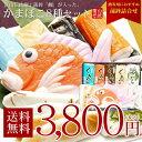 【送料無料】富山伝統細工蒲鉾「鯛」入り蒲鉾8種セット...