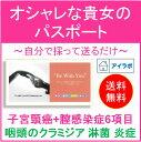 【送料無料】KIT 009 アイラボの「オシャレな貴女のパスポート」【楽天BOX対応】【あす楽対応】【10P27May16】