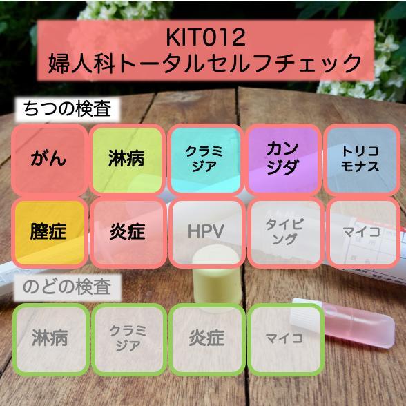 【送料無料】KIT012x アイラボの「婦人科トータルセルフチェック」【あす楽対応】