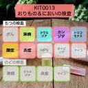 【送料無料】KIT013 アイラボの「おりもの&においの検査」【あす楽対応】