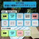 【送料無料】KIT103 アイラボの「尿道と咽頭のリンクラチェック」【あす楽対応】