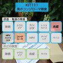【送料無料】KIT111 アイラボの「男のコンジローマ検査」【あす楽対応】