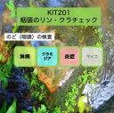 【送料無料】KIT201アイラボの「咽頭のリン・クラチェック」【あす楽対応】検査項目:淋病、クラミジア、咽頭炎