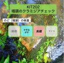 【送料無料】KIT202 アイラボの「咽頭のクラミジアチェック」【あす楽対応】