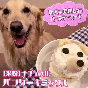 【米粉】ナチュラルパンケーキミックス 150g | バースデーケーキ クリスマスケーキ ハロウィン 手作りおやつ 手作りごはん イリオスマイル