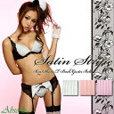 [Absorle] is / one piece of article classical stripe / satin stripe panties [standard] [T back]