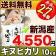 キヌヒカリ 新潟県産 27年産 10kg(5kg×2袋)【送料無料】(沖縄・佐渡を除く)