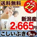 新潟県産 こしいぶき 5kg 27年産 米 【送料無料】(北海道・九州・沖縄・離島を除く)