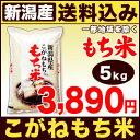 こがねもち米 5kg H28年新潟県産【送料無料】(沖縄・佐渡を除く)