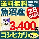 28年 魚沼産 コシヒカリ 産直 5kg【送料無料(沖縄・佐渡を除く)】