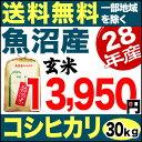 魚沼産コシヒカリ 産直 30kg 玄米 H28年産 米 【送料無料】(一部地域を除く)