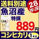 28年 特撰 新潟県 魚沼産コシヒカリ 1kg 28年産 米